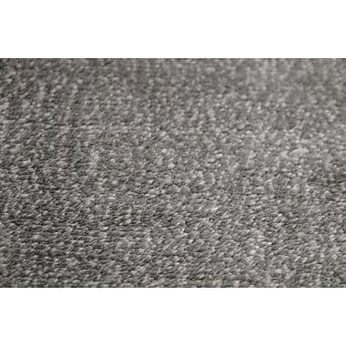 AMER Rugs Pure Essence Charcoal Area Rug; 2' x 3'