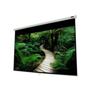 "EluneVision 84"" by 84"" Triton Manual Pull-Down Projector Screen"