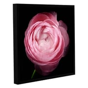 ArtWall Pink III by Cora Niele Floater Framed Graphic Art on Wrapped Canvas; 36'' H x 36'' W x 2'' D