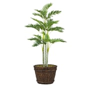 "Laura Ashley (VHX113217) 76"" Tall Palm Tree in Planter"
