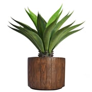 "Laura Ashley 37"" Tall Giant Aloe in Planter (VHX120202)"