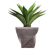 "Laura Ashley 42"" Tall Giant Aloe in Planter (VHX120203)"