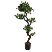 "Laura Ashley 59"" Tall Yacca Tree"