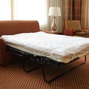 Science of Sleep Foam Sofa Bed Mattress Pillow Top; Full