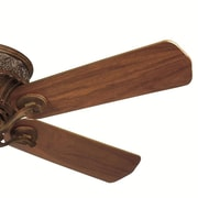Casablanca Fan 21'' Ceiling Fan Blade Set (Set of 5)