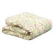 Brite Ideas Living Findlay Apricot Down Comforter; Queen