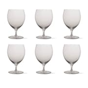 TAG Tag Craft Beer Snifter (Set of 6)
