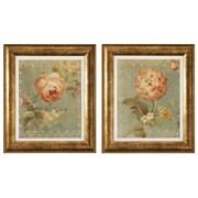 Propac Images Rose / Poppy Framed Art (Set of 2)
