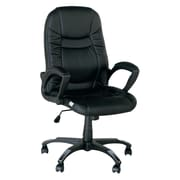 Winport Industries High-Back Lord Leather Executive Office Chair; Black