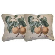 DaDa Bedding Apricot Woven Pillow Cover (Set of 2)