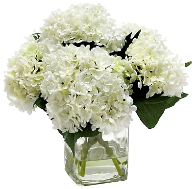 Distinctive Designs Waterlook Hydrangeas in Clear Square Glass WYF078277701003