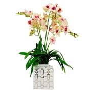 Winward Designs Dendrobium Orchids in Square Ceramic Vase