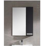 Fine Fixtures Atwood 24'' x 31'' Surface Mount Flat Medicine Cabinet; Black