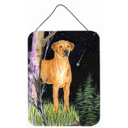 Caroline's Treasures Starry Night Rhodesian Ridgeback Aluminum Hanging Painting Print Plaque