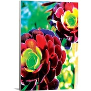 Artzee Designs Modern Rainbow Flower Wall Art on Wrapped Canvas; 24'' H x 16'' W x 0.75'' D