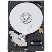 """WD Caviar SE SE WD5000AAJS 500 GB 3.5"""" Internal Hard Drive"""