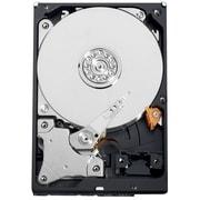 WD RE2 WD7500AYYS 750 GB Internal Hard Drive