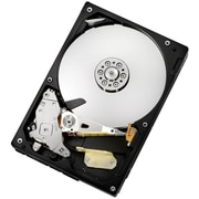 "HGST Deskstar 500 GB 3.5"" Internal Hard Drive"