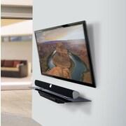 OmniMount OWS60 AV Wall Shelf