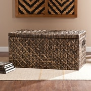 Wildon Home   Lucas Hyacinth Storage Trunk