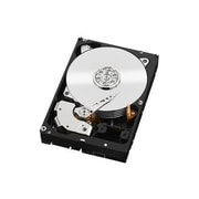 Western Digital ® Re ™ WD6001FXYZ 6TB SATA 6 Gbps Internal Hard Drive