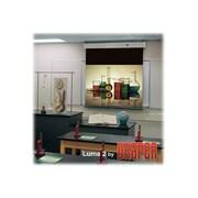 """Draper ® Luma 2 206004 Manual Wall/Ceiling Projection Screen, 119"""""""