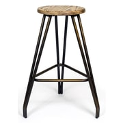 Aeon Furniture Euro Home 29'' Bar Stool (Set of 2)
