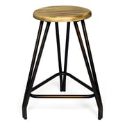 Aeon Furniture Euro Home 24'' Bar Stool (Set of 2)