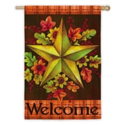 Evergreen Enterprises, Inc Fall Barn Star Vertical Flag