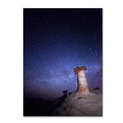 "Trademark Fine Art ''Starry Night in Arizona I'' by Moises Levy 24"" x 32"" Canvas Art (ALI1138-C2432GG)"