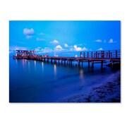 "Trademark Fine Art ''Florida Pier'' by Preston 24"" x 32"" Canvas Art (EM0527-C2432GG)"