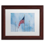"Trademark Fine Art ''Red White & Blue'' by David Ayash 11"" x 14"" White Matted Wood Frame (MA0640-W1114MF)"
