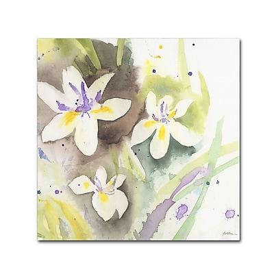 """""Trademark Fine Art ''White Iris'' by Sheila Golden 14"""""""" x 14"""""""" Canvas Art (SG5734-C1414GG)"""""" 2077658"