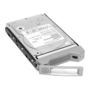 "G-Technology Deskstar 0S03355 4 TB 3.5"" Internal Hard Drive"