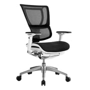 Eurotech Seating iOO Adjustable Back Mesh Office Chair; White