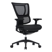 Eurotech Seating iOO Adjustable Back Mesh Office Chair; Black