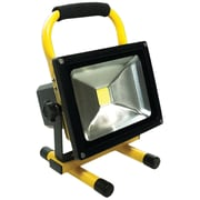 Race Sport  White LED Portable Work Light (20 Watts; 1,500 Lumens)