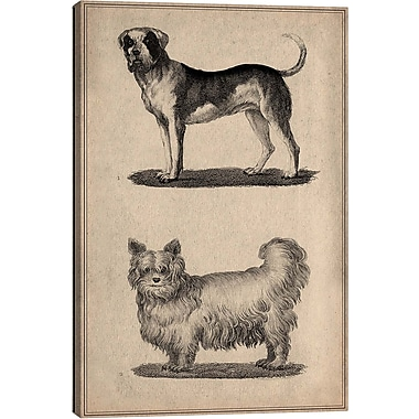 iCanvas Animal Art Vintage French Dogs Painting Print on Wrapped Canvas; 12'' H x 8'' W x 0.75'' D