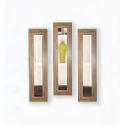 Rayne Mirrors Molly Dawn Brown Barnwood Mirror Panels (Set of 3); 25.5'' H x 9.5'' W x 0.75'' D