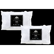 DSD Group Triumph Hill White Goose Feather and Down Bed Pillow (Set of 2); King
