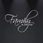 Innovative Stencils Family Is Forever Vinyl Wall Decal Art Saying Home Decor Sticker; White
