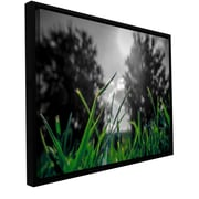 ArtWall Grass by Revolver Ocelot Framed Graphic Art on Wrapped Canvas; 24'' H x 36'' W