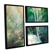ArtWall Calm River by Elena Ray 3 Piece Floater Framed Graphic Art on Canvas Flag Set