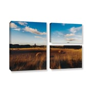 ArtWall Open Fields by Revolver Ocelot 3 Piece Photographic Print on Gallery-Wrapped Canvas Flag Set