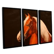 ArtWall Horse Painted by Lindsey Janich 3 Piece Floater Framed Painting Print on Canvas Set