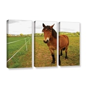 ArtWall Horse Painted Ii by Lindsey Janich 3 Piece Photographic Print on Gallery-Wrapped Canvas Set