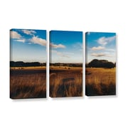 ArtWall Open Fields by Revolver Ocelot 3 Piece Photographic Print on Gallery-Wrapped Canvas Set
