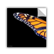 ArtWall Backyard Butterfly by Lora Mosier Removable Photographic Print; 24'' H x 24'' W
