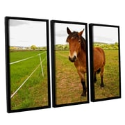 ArtWall Horse Painted Ii by Lindsey Janich 3 Piece Floater Framed Photographic Print on Canvas Set