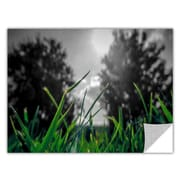 ArtWall Grass by Revolver Ocelot Removable Graphic Art; 32'' H x 48'' W